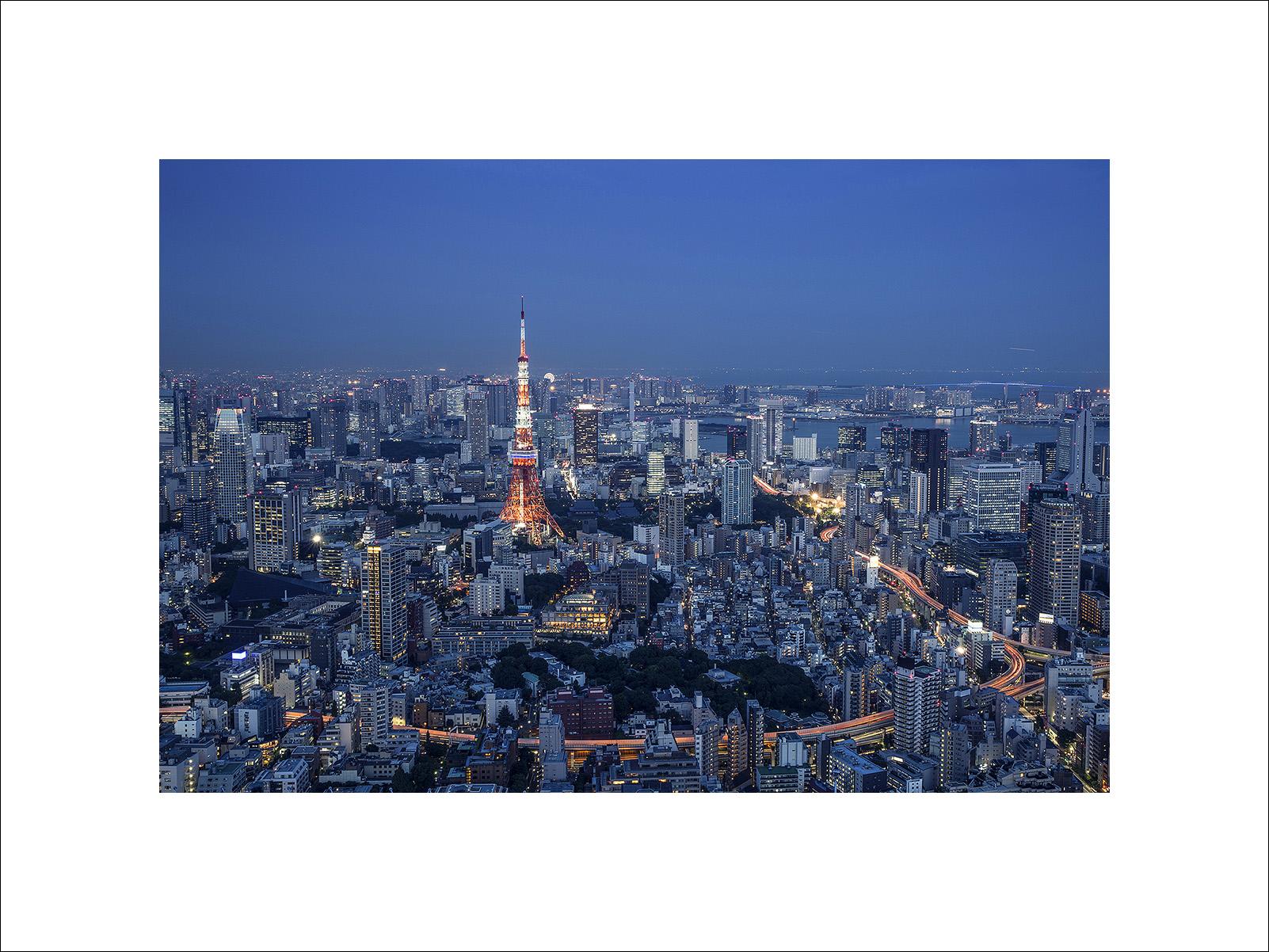 zzzzzz_JAPAN_ARNOLD4