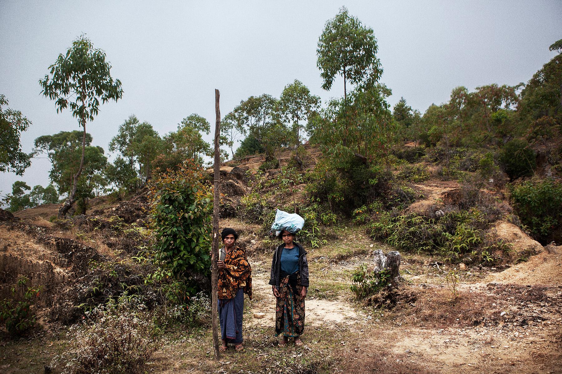 Timor-Leste Update