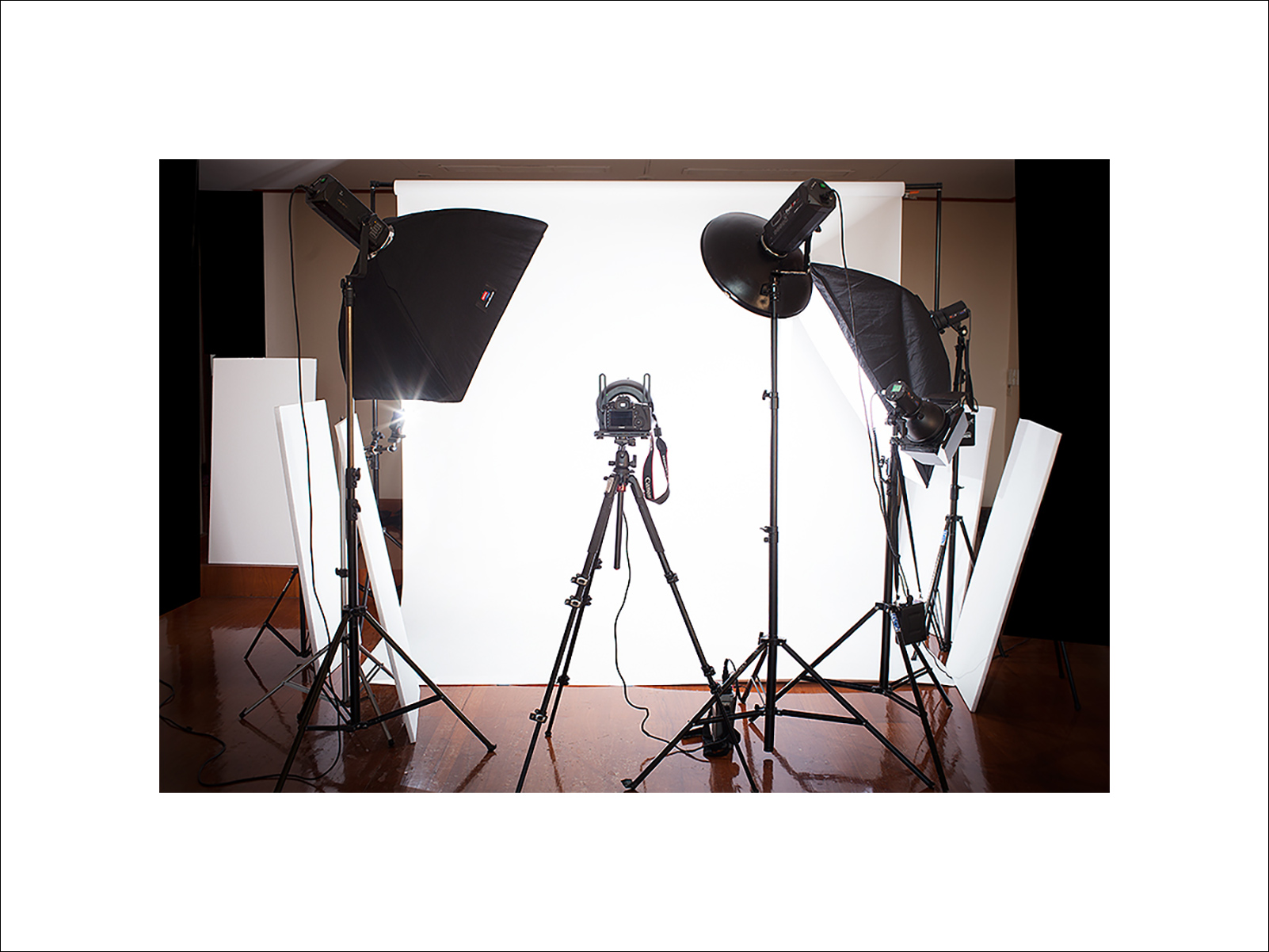 Studio setup featuring, ring flash, 6 lights with all light shapers from beauty dishes to soft boxes, barn doors, grids etc...